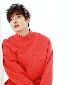 Wonwoo ✕ TenAsia | #Seventeen