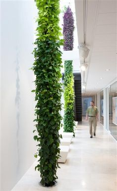 At Intermontage in Terwolde these two Plantwires visually connect the first and second floor. Plantwires are stand-alone, automatically irrigated plant objects which can be up to 25m long. Interior Garden, Interior Plants, Interior Design, Plant Design, Garden Design, Indoor Garden, Indoor Plants, Vertikal Garden, Green Facade
