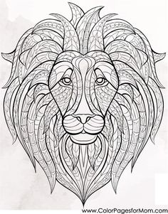 animal coloring page #lion #colorpagesforadults #adultcoloringpages