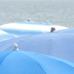 blue beach umbrellas - saintes maries de la mer beach, south of France
