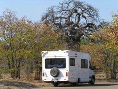 KNP   Skukuza | Woelig, maar waarde - WegSleep Recreational Vehicles, African, Camper Van, Campers, Rv Camping