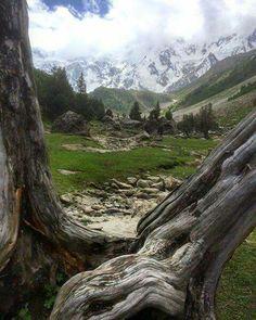 Biyal Camp Near Naga Parbat Pakistan