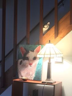 My roommate came home to witness my cat being summoned by her new shrine   cats funny pictures