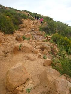 A Steep Portion of the Trail | Yelp Cowles Mountain Hike The highest point in San Diego