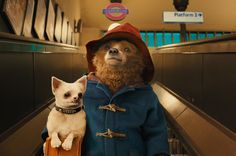 Watch Paddington at VUE Cinemas this weekend with Kids AM Showings for £1.75 each