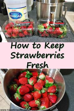 Do you struggle with figuring out how to keep your strawberries fresh? Here's a method to make them last longer!