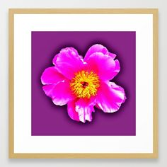 Pink flower on a wintry background Framed Art Print ,Choose from a variety of frame styles, colors and sizes to complement your favorite Society6 gallery, or fine art print - made ready to hang. Fine-crafted from solid woods, premium shatterproof acrylic protects the face of the art print, while an acid free dust cover on the back provides a custom finish. All framed art prints include wall hanging hardware.