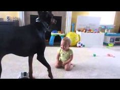 Adorable baby plays with doberman dog!! I can't stop laughing!!!