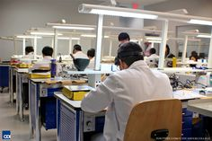 Visiting the Dental Technician Program Labs at CDI College in Surrey, BC - Students are Working on Teeth  http://www.youtube.com/watch?v=juiv13Niv2A  #Visiting #Dental #Technician #Program #Labs #CDI #College #Surrey #BC #Students #Working #Teeth