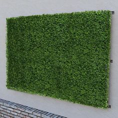 Artificial Living Wall and Privacy Screen 96in. x 48in. These artificial green walls are fabulous!
