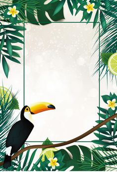 Tucano BICO de ave selvagem de Fundo Jungle Theme Birthday, Mickey Mouse Art, Tropical Background, House Plants Decor, More Wallpaper, Border Design, Mural Art, Flower Frame, Tropical Flowers