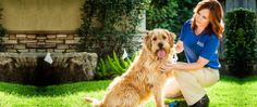 More than a dog fence, it's freedom & safety - Invisible Fence® Brand