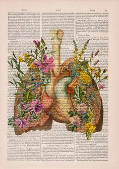 The Spanish duo Magali and Gabi created the design studio PRRINT, who produces beautiful and poetic illustrations on old book pages, combining human anatomy and floral arrangements.