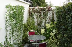 RHS Hampton Court Flower Show Centrepoint show garden, featuring stainless steel Green Wall trellis system Hampton Court Flower Show, Rhs Hampton Court, Wire Trellis, Small Outdoor Spaces, Outdoor Plants, Secret Gardens, Wall, Green, Flowers