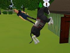 Sims Gone Wrong : Photo