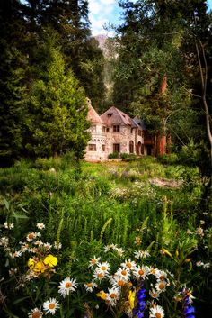 The Summer HouseLake Tahoe, California  Warm, sunny days and flowers always reminded her of childhood days at the summer house. Life was sim...