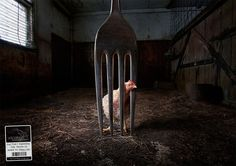These Powerful Ads Featuring Farm Animals are Grim Reminders of Where our Food Comes From