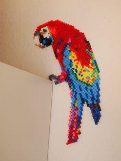 Parrot hama perler beads