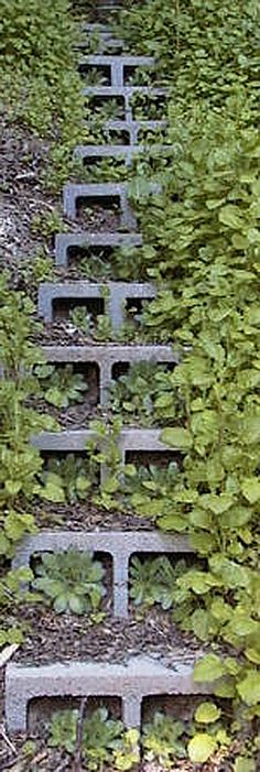 5 Ways to Use Cinder Blocks in the Garden • Lots of creative projects, ideas and tutorials! Including, from 'sustainable urban living', these fabulous concrete block steps.