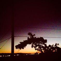It Follows #scary #skull #monster #clouds #purple #color #trail #sunset #sundown #sun #tree #horror #dusk #California #dark #evil