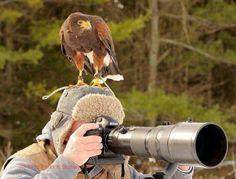 Out bird watching