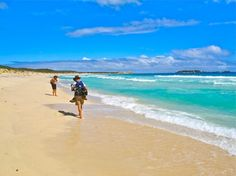 Cape to Cape Explorer Tours Beach walking, shoes free sml This is definatley a goal to work towards Bell Tent, Walking Shoes, The Locals, Glamping, Swimming Pools, Goal, Cape, Surfing, Track