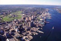 Baby Boston is awesome! Halifax, Nova Scotia