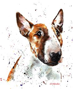 This print is from an Original painting by Eddie Kagimu MATERIALS: quality heavy-weight 100 cotton mould printing paper The Print is signed by the Artist Perros Bull Terrier, Bull Terrier Funny, Pitbull Terrier, Fox Terrier, Bull Terrier Tattoo, Mini Bull Terriers, English Bull Terriers, Bull Tattoos, Bully Dog