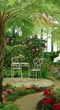 Inviting tropical garden at The Royal Greenhouses of Laeken in Brussels, Belgium • photo: Natali Antonovich on Flickr