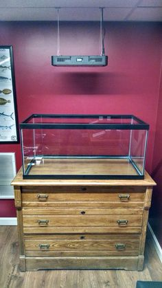 Dresser Aquarium Stand Conversion Turtle Aquarium