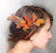 cocoon butterfly hair comb by whichgoose on Etsy.instead of flowers or a veil Cute Hairstyles, Wedding Hairstyles, Holiday Hairstyles, Celebrity Hairstyles, Wedding Accessories, Hair Accessories, Butterfly Hair, Monarch Butterfly, Orange Butterfly