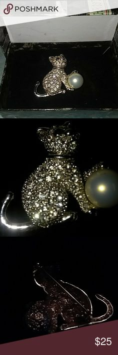 Bling Brooch  Cat Pin from Macys Blinging silver  Cat  pin  to symbol one of your loves Jewelry Brooches