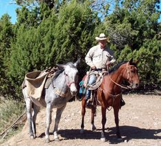 """"""" Cow Folks Know-How """" by Darrell Arnold Cowboy Poetry, Riding Helmets, Westerns, Folk, Horses, Hats, Animals, Animais, Animales"""