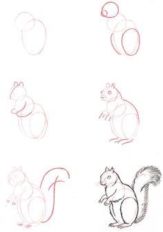 corso di grafica e disegno: come disegnare gli animali