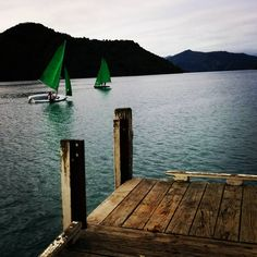 Day 7 - South Island road trip.  Sails in Picton Harbour. That marked the end of our first road trip to the South Island as we began to make our way back up to Auckland.  We had an amazing time and only saw a fraction of what the top of the South Island had to offer.  Many adventures still to be had :)