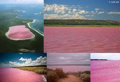 The pink lake (Lake Hillier, Australia).  Discovered in 1802; no one can explain why it is pink.