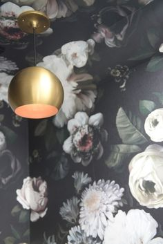 bold flower wall paper