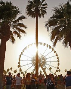 Your ultimate Coachella playlist is here