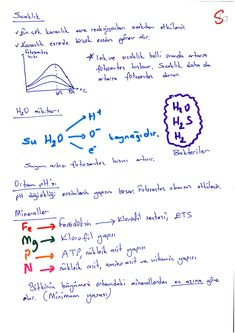 sanalbiyoloji Fotosentez-6 School Notes, Biology, Chemistry, Study, Math Equations, Education, School Grades, Studying, Educational Illustrations