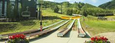 Park City Alpine Coaster #parkcityutah Like a roller coaster in a toboggan-style car, the Alpine Coaster in Park City Mountain Resort is sure to thrill you! Reaching speeds up to 30 mph, this ride will whiz you down the mountain on almost 4,000 feet of track for an unforgettable experience. For more information please visit www.parkcityutah.com