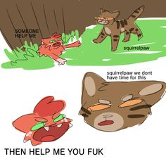 Their entire relationship in one image Warrior Cats Funny, Warrior Cats Comics, Warrior Cat Memes, Warrior Cats Fan Art, Warrior Cats Series, Warrior Cat Drawings, Cat Comics, Warriors Memes, Love Warriors