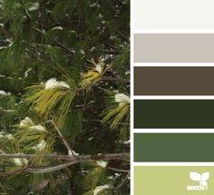 winter greens Color Palette