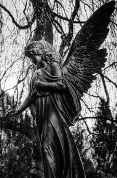 Used Statues # Cemetery Angels, Cemetery Statues, Cemetery Art, Angel Garden Statues, Garden Angels, Angels Among Us, Angels And Demons, Statue Ange, Angel Images