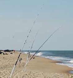 1000 images about favorite places spaces on pinterest for Surf fishing virginia beach