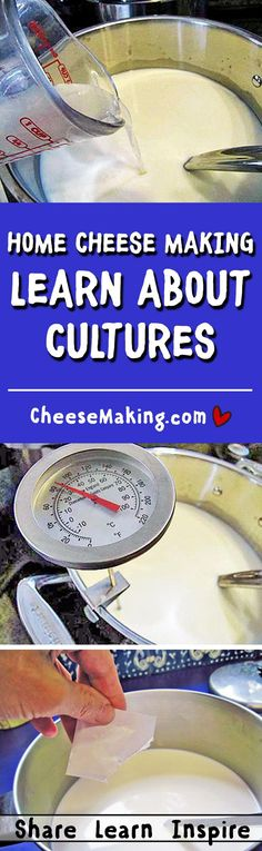 Cheese Making Cultures FAQ | How to Make Cheese | Cheesemaking.com
