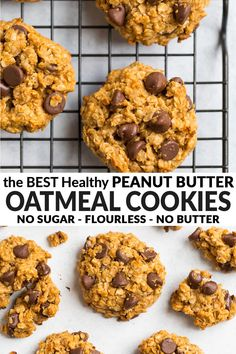 Healthy Peanut Butter Oatmeal Cookies with honey, oats, and chocolate chips (no sugar, no flour and no oil!) Flourless and chewy, these easy, healthy cookies are the BEST way to get your dessert fix! via @wellplated Healthy Cookie Recipes, Healthy Cookies, Healthy Sweets, Healthy Baking, Baking Recipes, Healthy Snacks, Oatmeal Cookies No Sugar, Peanut Butter Oatmeal, Healthy Peanut Butter