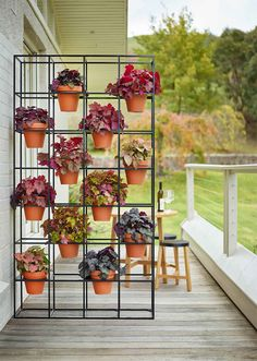 O jardim vertical ou as hortas suspensas são ótimas alternativa para quem tem pouco espaço em casa, mas quer ficar mais perto da natureza. Confira dicas!
