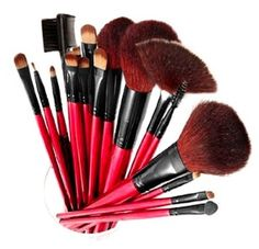 Amazon.com: SHANY Professional 13-Piece Cosmetic Brush Set with Pouch, Set of 12 Brushes and 1 Pouch, Red: Beauty Disclosure: affiliate link