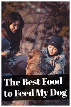 The Best Food to Feed My Dog Every Day