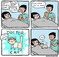 Lo más freak que he visto en humor gatuno / A doctor who also is a cat!